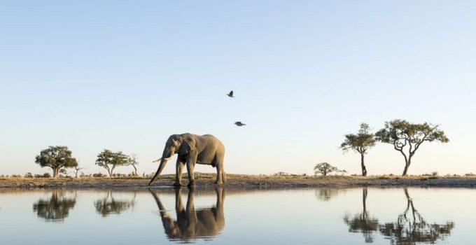 periodo migliore per andare a botswana