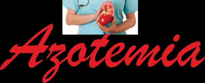 Creatinina e azotemia alta dieta
